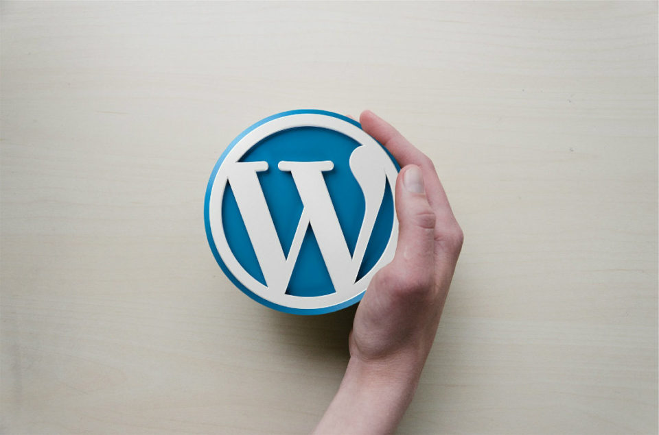 Wordpress for Business and Marketing