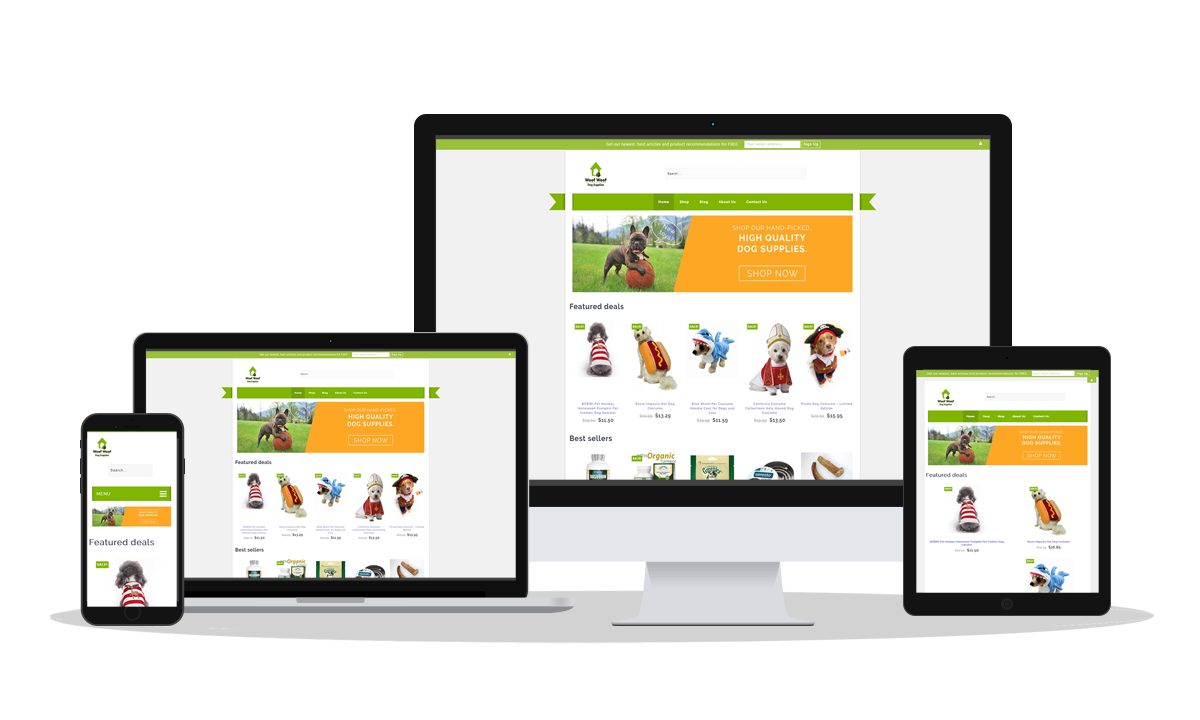 Our Ecommerce Case Study: Woof Woof Dog Supplies